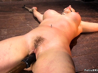Hogtied chubby confidential light-complexioned pussy toyed