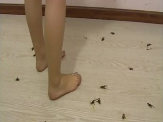 Chinese mother relawes on the family crickets